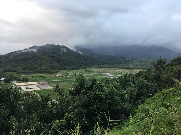 farm-hawaii- 20