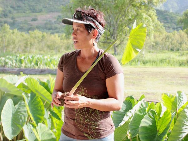farm-hawaii- 25