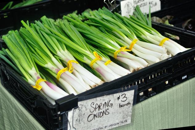 farmers-market-portland ajspring-onions-1000x667