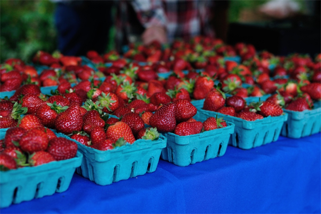 farmers-market-portland anstrawberries-1000x667