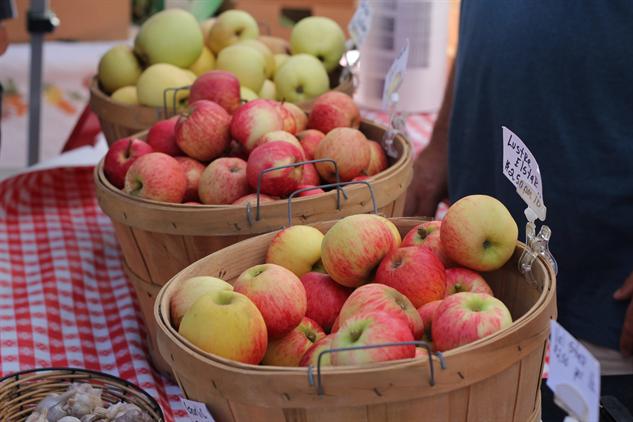 fm-fetish-arcata image-9-apples