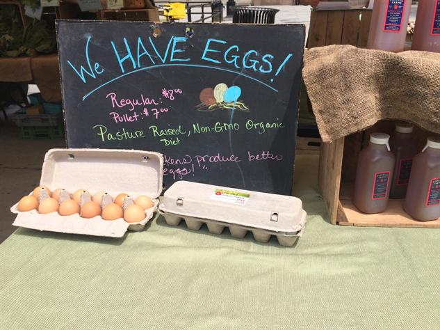 fm-fetish-brooklyn eggs