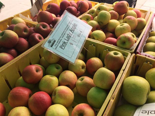 fm-fetish-brooklyn pink-lady-apples