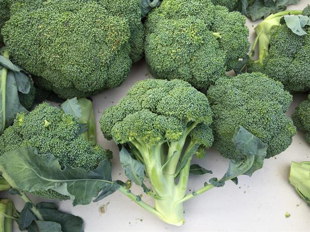 fm-fetish-richmond 3-broccoli