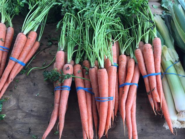 fm-fetish-richmond 4-carrots