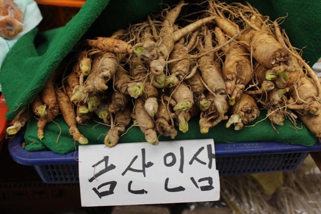 fmf-korea img-1337-1000x667