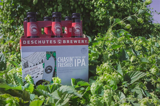 7 Fresh Hop Ales You Should Be Excited About Drink