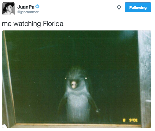 funniest-election-tweets jpbrammer