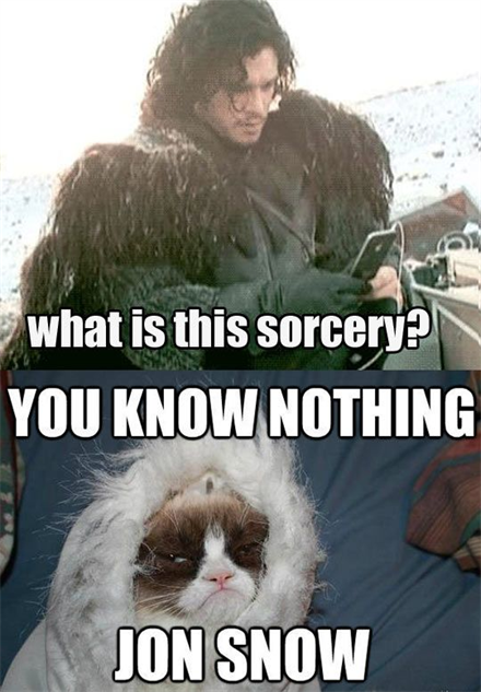 game-of-thrones-memes 30-memes-got-jon-snow-grumpy-cat