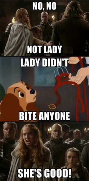 game-of-thrones-memes 35-memes-got-sansa-lady