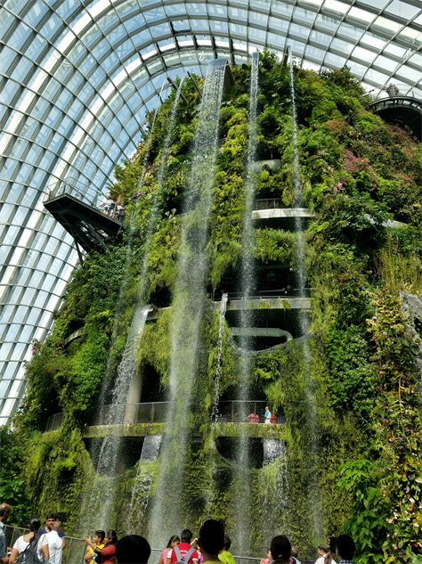 gardens-by-the-bay cloudforest