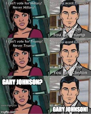 gary-johnson-memes 15owj6