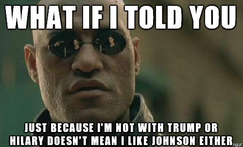 gary-johnson-memes rwlhu00