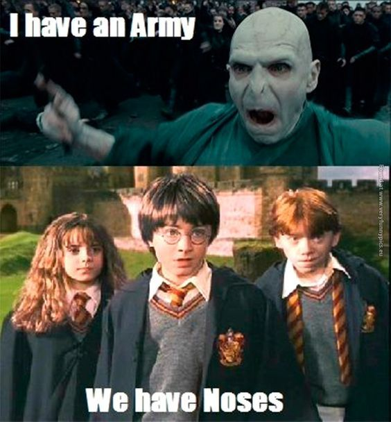 harry potter meme 59?1384968217 125 of the best harry potter memes movies galleries paste