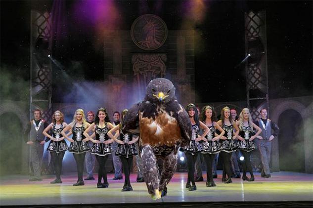 hawk-photoshop-battle hawk-of-the-dance