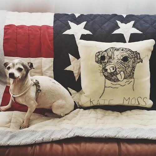 hyla-frank-pillows pillowhf3