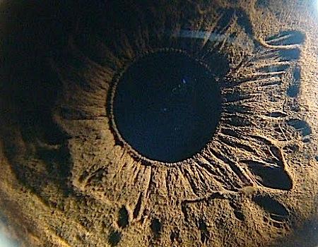 Eye Origins