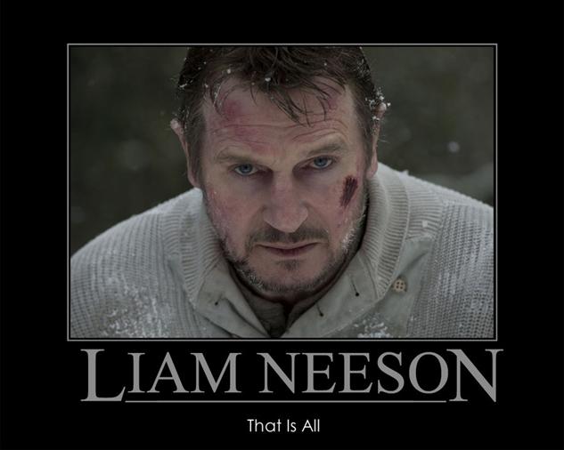 liam-neesons-memes de-motivation--liam-neeson-by-extremenigma0711-d4rg6ho