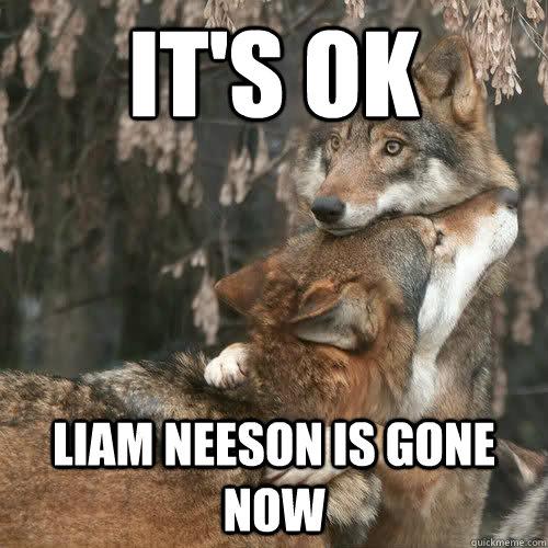 liam-neesons-memes eaa79c315266e1ce978f42d51eefd98ccc55152ef46cf4e88e20184fda06