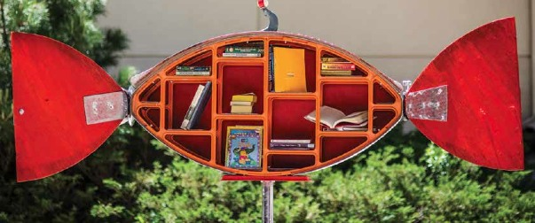 little-libraries rocket2