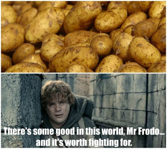 lord-of-the-rings-memeish lotr-meme-110