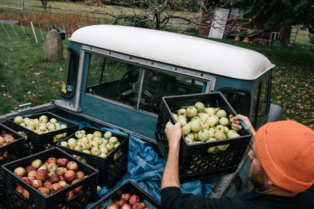 lost-apples shacks-truck