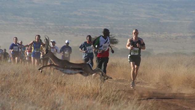marathontravel lewa-marathon