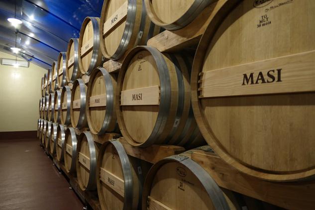 masi-winery p1000242