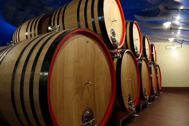masi-winery p1000243