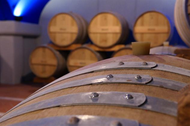 masi-winery p1000261