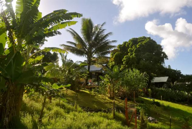 maui-airbnbs image-2