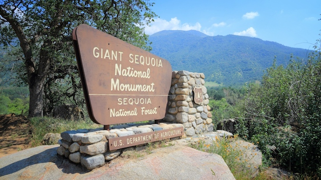 national-monuments sequioa