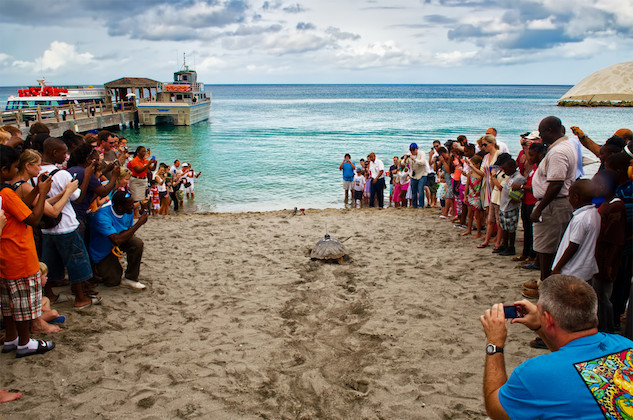 nevis-west-indies turtle-release-at-four-seasons--credit-four-seasons-and-mari