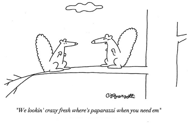 new-yorker-cartoons-with-kanye-tweets photo_27595_0-3