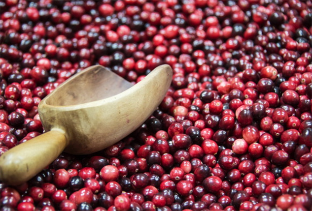 overlooked-superfoods cran-carn