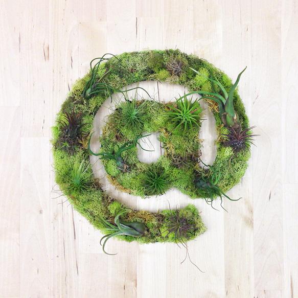 plantart plant-art1