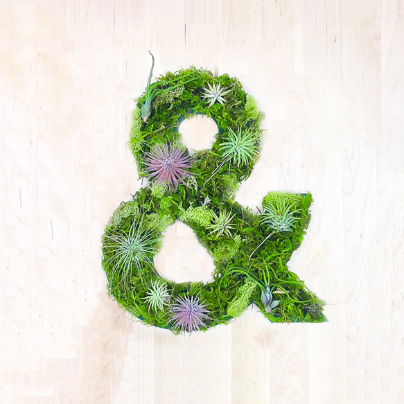 plantart plant-art2