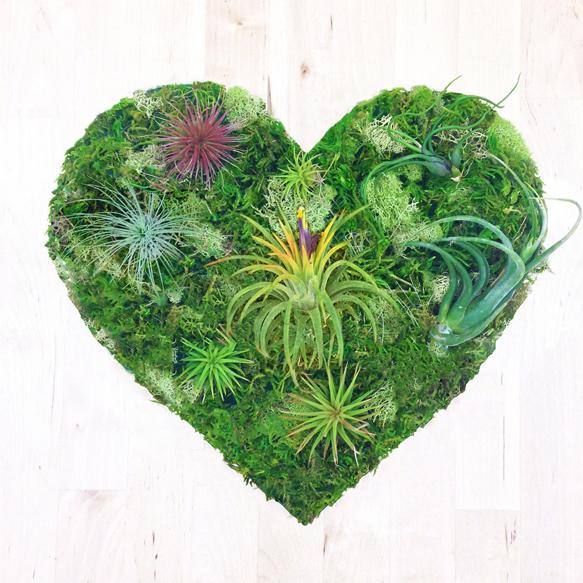 plantart plant-art4