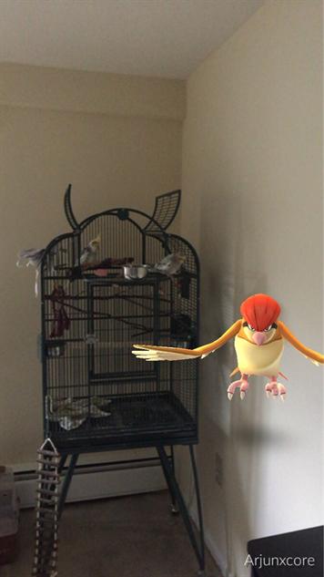 pokemon-go-photos cage-escape