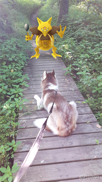 pokemon-go-photos pokemon-dog-hike