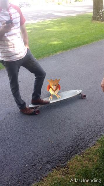 pokemon-go-photos skater-bird