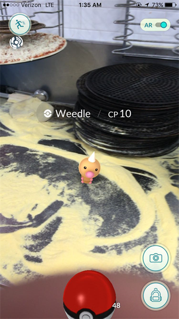 pokemon-go-photos weedle-pizza