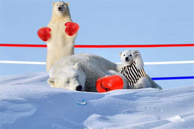 polar-bear-photoshop-battle polar-bear-photoshop-2