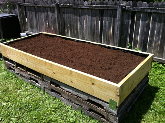 raised-bed-how-to 5fill