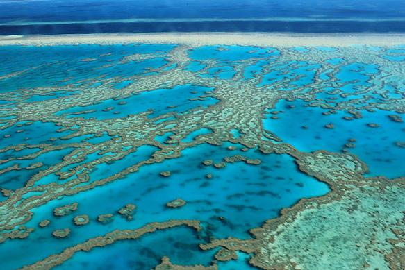 reefs great-barrier-reef-australia