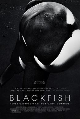 science-documentaries blackfish