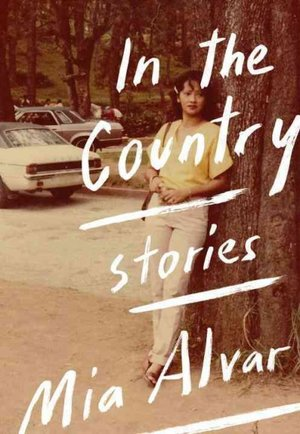short-story-collections 1inthecountry300