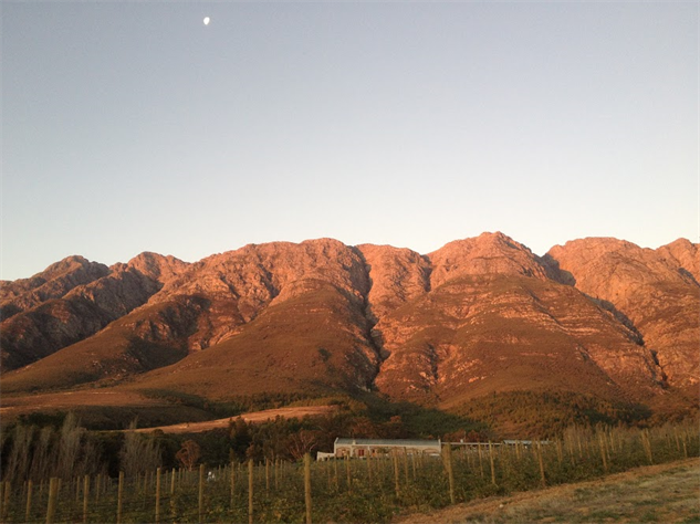 south-africa-wineries winery-moon-sunset