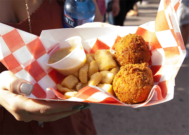 state-fair-texas state-fair-of-texas---deep-fried-chicken-n-dumplins---anneli
