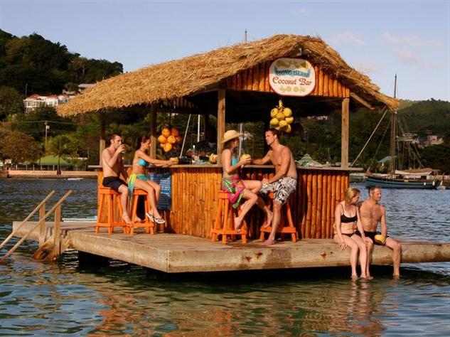 swim-up-bars coconut-bar-at-young-island-resort